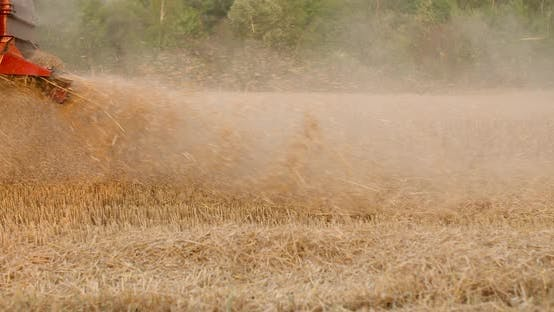Thumbnail for Combine Harvester Harvesting Agricultural Wheat Field