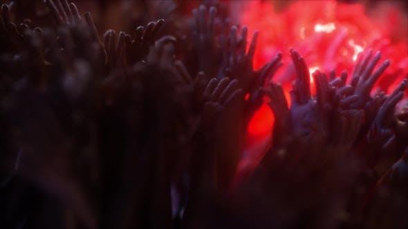 Concert Crowd Hands Dancing V3 Hd