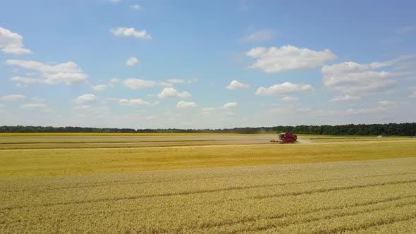 Thumbnail for Combine Harvesting Grain