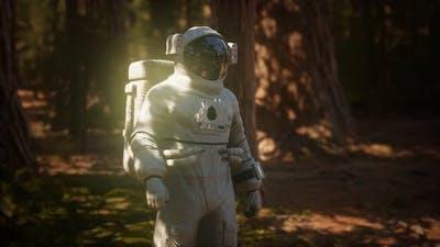 Lonely Astronaut in Dark Forest
