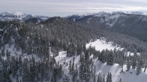 Beautiful Helicopter Scenic View Of Cascade Mountain Range With Fresh Powder Snow On Forest Trees