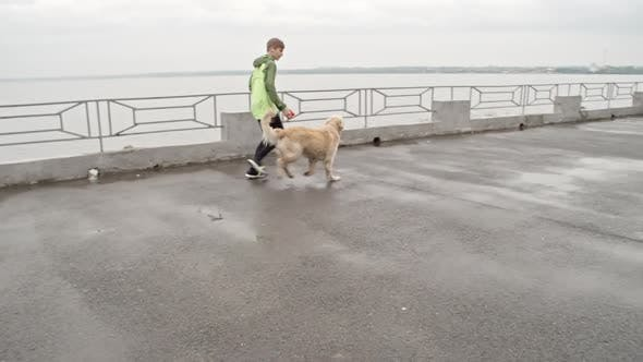 Thumbnail for Child Playing with Dog at Pier
