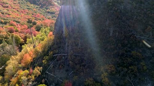 Flying over jagged cliff revealing canyon in Fall color