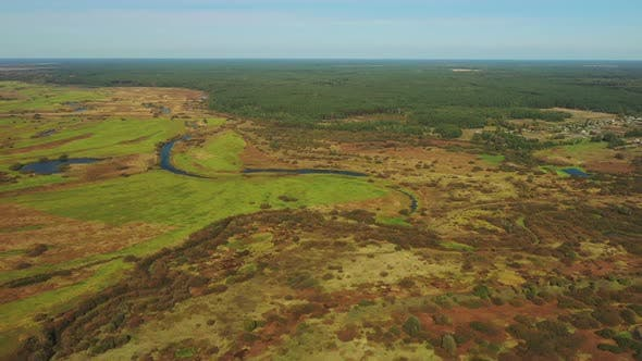 Aerial View Of Green Grass Landscape. Top View From High Attitude In Summer Evening. Marsh Bog