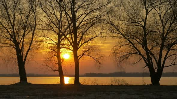 Thumbnail for Colour Sunset Over The Trees And River With Sun And Orange Clouds