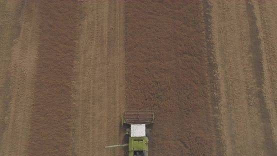 Thumbnail for Aerial view of a tractor harvesting
