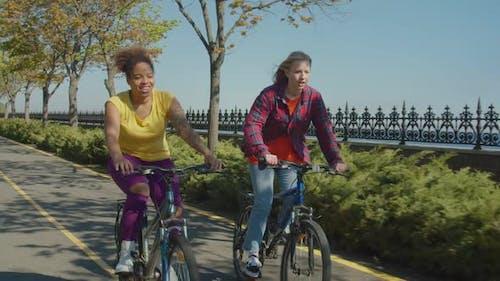 Portrait of Active Multiethnic Female Friends Biking on Park Alley