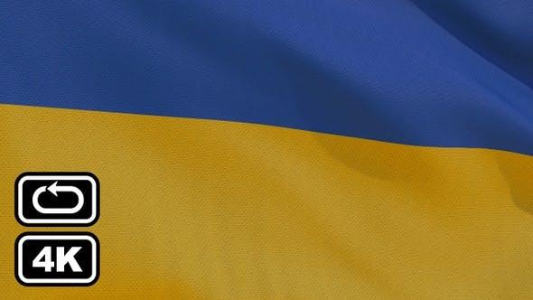 Cover Image for Ukraine Flag 4K Seamless Loop