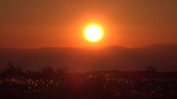Thumbnail for Sunrise Plain
