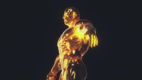 Golden Bodybuilding Trophy Hd