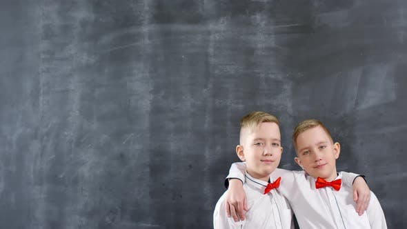 Thumbnail for Caucasian Twins Hugging and Posing against Chalkboard