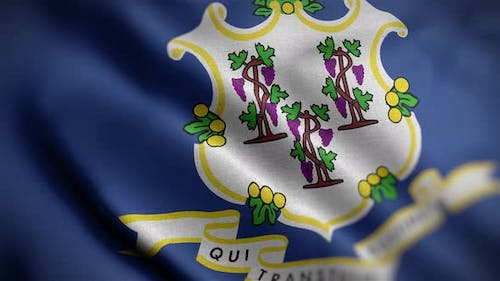 Connecticut State Flag Angle