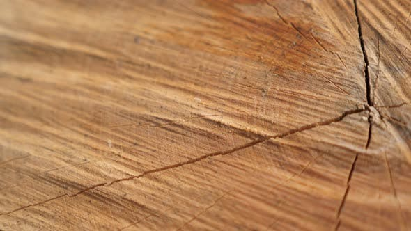 Thumbnail for Slow tilt over texture of firewood  made with splitting maul of tree logs close-up 4K 2160p 30fps Ul