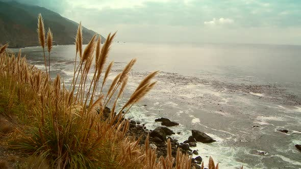 Thumbnail for Cliff top view of rocky shoreline on gloomy day