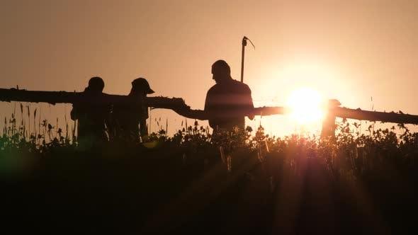 Thumbnail for Silhouette junger Bauer im Dorf stehend mit Sichelsenrechen Werkzeug im Grünen Sommer