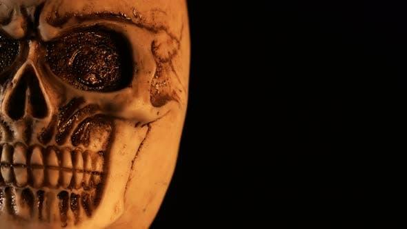 Thumbnail for Scary Skull Detail 4 K