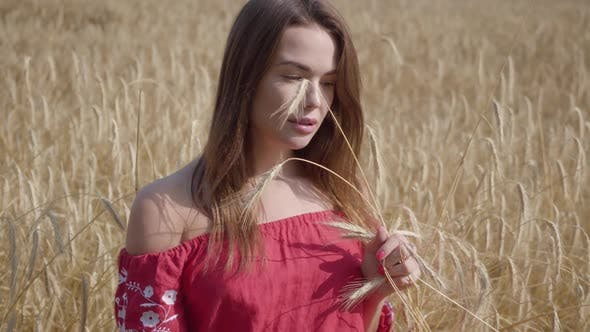 Thumbnail for Lovely Young Woman Enjoying Nature and Sunlight in Wheat Field at Incredible Colorful Sun Rays