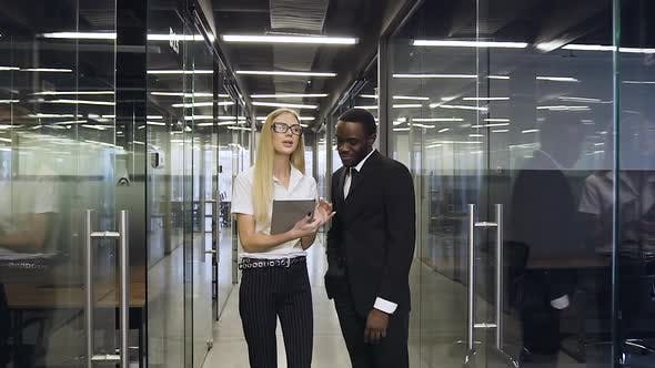 Thumbnail for Multiracial Business People whih Standing in Modern Company Hall and Discussing