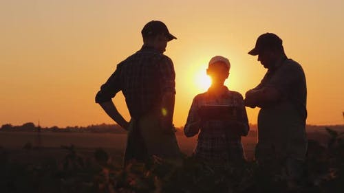 A Family of Farmers Debating in the Field at Sunset