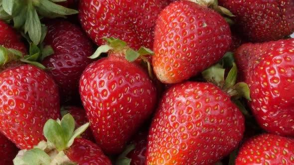 Thumbnail for Fresh Fragaria  ananassa    tasty red fruit background 4K 2160p UltraHD tilt footage - The garden st