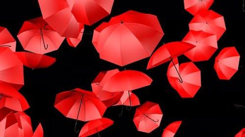 Regenschirm 4k