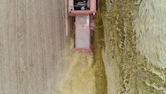 Thumbnail for Combine Harvester Harvesting Wheat