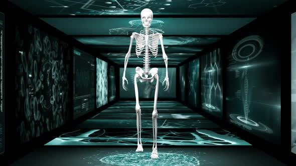 Animation of human skeleton walking hallway of scientist screen