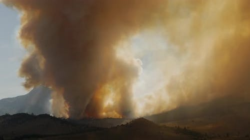 Forest Fire Burning Mountainside