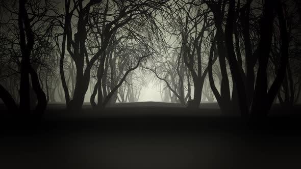 Thumbnail for Horror Forest 4k