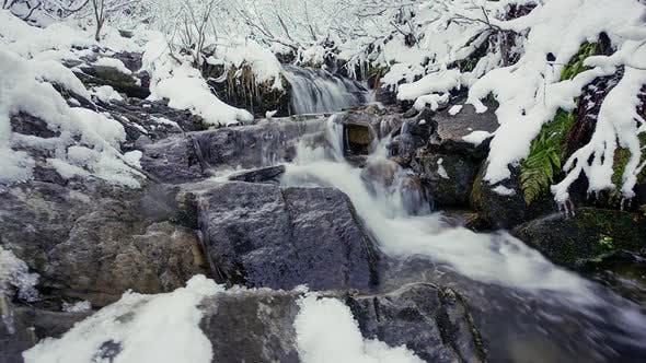 Water Flowing From the Source Made From Wood in Mountainous Forest in Carpathian Mountains Ukraine