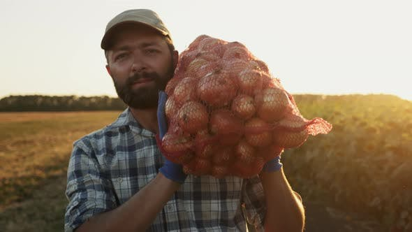 Un fermier souriant porte un sac d'oignons sur son épaule