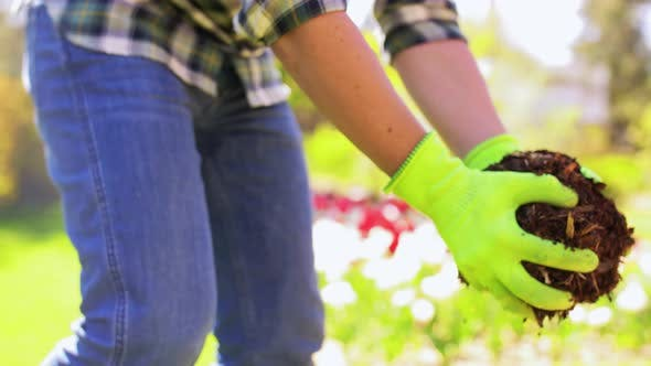 Thumbnail for Man Pouring Soil To Flowers at Summer Garden