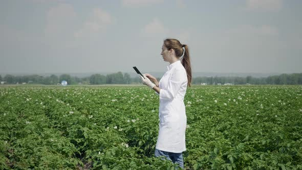 Thumbnail for Agronomist At Work In A Field Using A Digital Tablet