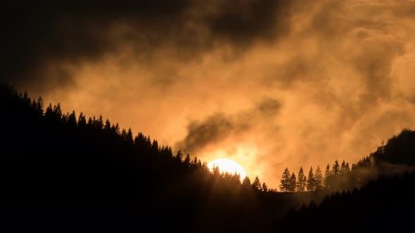 Thumbnail for Orange Sunset over Forest