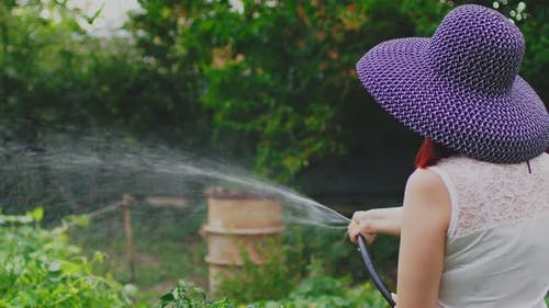 Rear View of Young Woman Watering Vegetable Garden From Hose