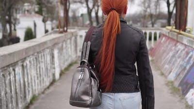 A Thief Steals a Woman's Bag