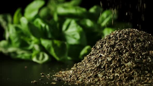 Green dried basil leaves pouring in a heap