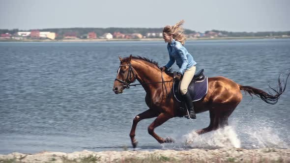 Thumbnail for Laughing Female Riding Horse through Water