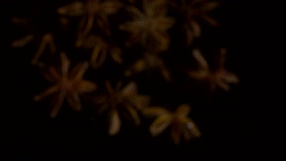 Cover Image for Star Anise on Dark Background