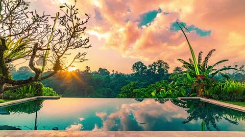 Infinity Pool in the Tropical Jungle, the Clear, Calm Water Reflects the Surroundings and the Sky in