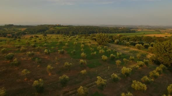 Cover Image for Panoramic View of Tuscany Fields with Farmland