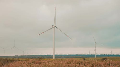 Windmills for Electric Power Production in the Meadow