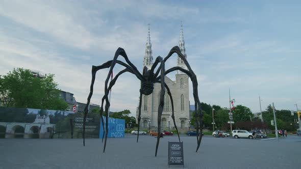 Thumbnail for The Maman statue, in Ottawa