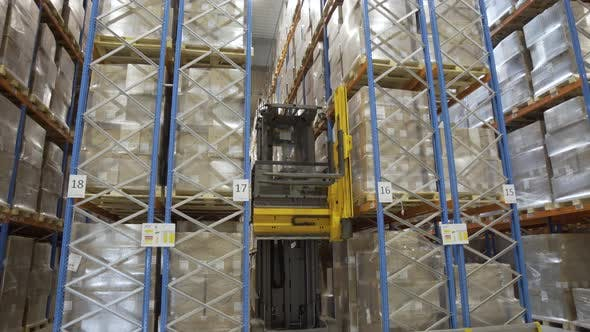 Warehouse Forklift Drivers Working
