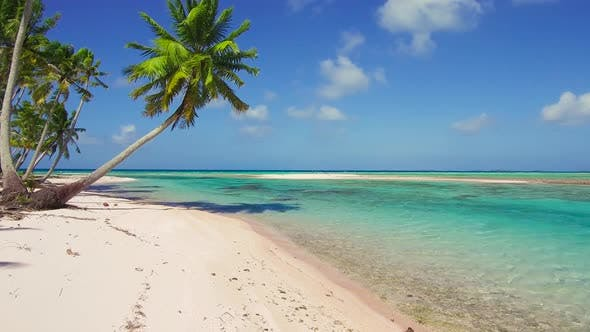 Thumbnail for Tropical Beach with Palm Trees in French Polynesia 88