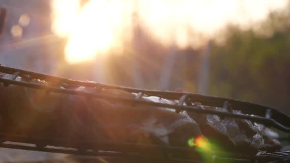 Thumbnail for Barbecue At Sunset