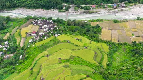 Rice Terraces in the Philippines, The Village Is in a Valley Among the Rice Terraces