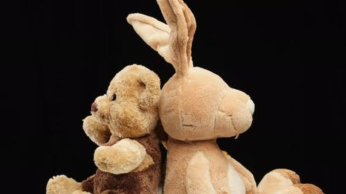 rabbit with long ears and various teddy bears rotates