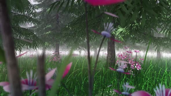 Thumbnail for In The Thick Pine Forest
