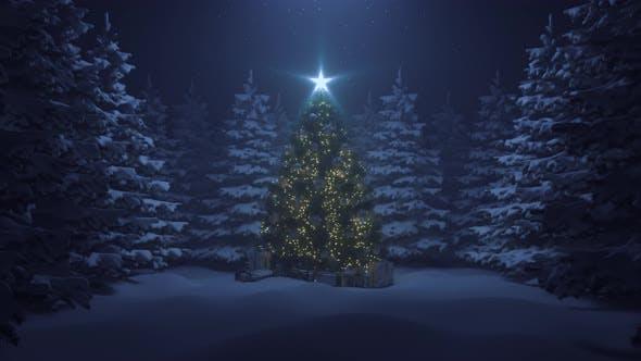 Thumbnail for Weihnachtsbaum mit einem leuchtenden Stern und eine Girlande im Wald mit fallendem Schnee